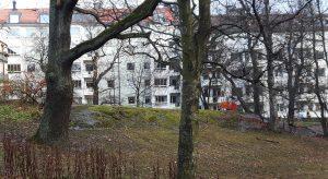 NUTID. Här låg en gång Ekhagens torp som revs under senare delen av 1920-talet.
