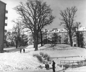 Vy från Virebergsvägen uppåt kullen med Vårvägens gård, 1959. Vinterbild.