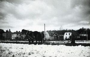 Jordbruk på ängen där brandstationen nu ligger. Ca 1940.