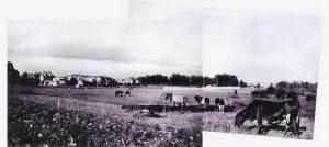 Rekonstruktion Ekensbergs hage som hörde till Ekensbergs gård, 1930-tal. Till vänster syns gamla Råsunda och området kring Stråket. Byggande mkom igång på allvar under 1940-talet. Bakom planket i bakgrunden som var gult ska det ibland ha rests cirkustält.