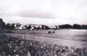 Bild 1 I bakgrunden syns Råsunda med Stråket. Råsundaskolan skymtar till vänster. Här syns också en tennishall m.m.
