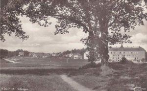 Vykort, Förlag Nordisk Konst, Stockholm. Vägen i förgrunden är Hagavägen. Bakom går Stråkvägen invid Råsunda skola. I dungen vänster i bild skymtar Ekensbergs gård. Ca 1930.
